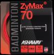 Victor Ashaway Zymax 70 set